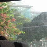 Rain from inside the bus