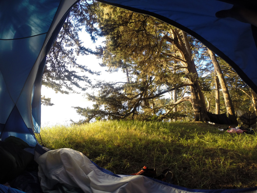 Morning from the tent